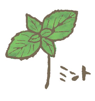 かわいいミントの葉のイラスト画像