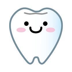 可愛い歯のイラスト画像