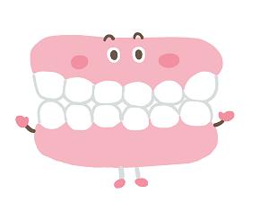 可愛い入れ歯