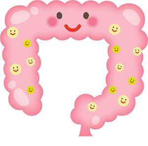 腸内環境 善玉菌のイメージ画像